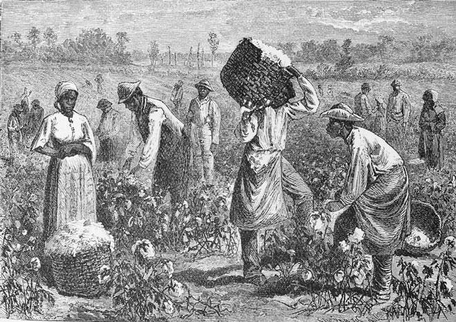 Scène dans une plantation de coton © NY Public Library, digital collections