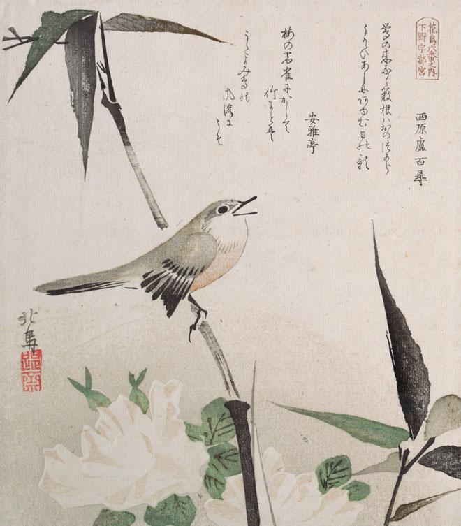 Roses et bambou avec rossignol, par Teisai Hokuba, XIXe siècle. H.O. Metropolitan Museum CC0