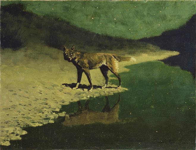 Clair de lune - Loup, peinture de Frederic Remington, vers 1909. Addison Gallery of American Art