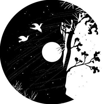 La boîte à outils: Nuit d'étoiles |