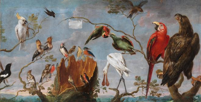 Concert d'oiseaux, de Frans Snyders. Source: Museo del Prado