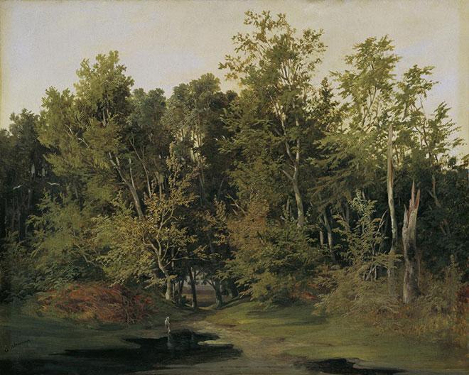 Paysage de forêt en Basse Autriche, peinture d'Anton Altmann, vers 1850. Österreichische Galerie Belvedere