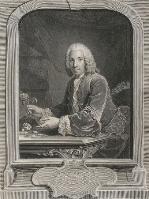 La Pouplinière par Balechou, vers 1750 © DR