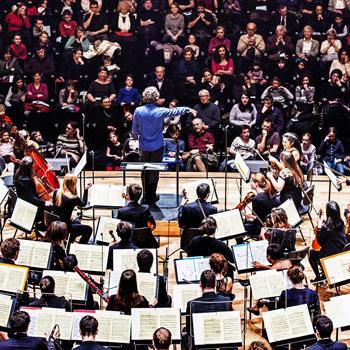 Concert éducatif, Philharmonie de Paris © William Beaucardet