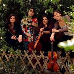 rencontre professionnelle : le musicien et l'action culturelle