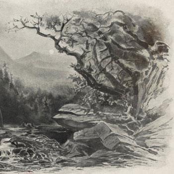 Der Freischütz de Carla Maria Von Weber  